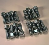 Lug Bolt, 914 w/Mahle Alloys, Set of 16