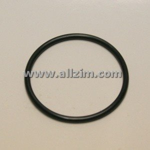 Replacement O-Ring for Fuel Pump Block Off Plate